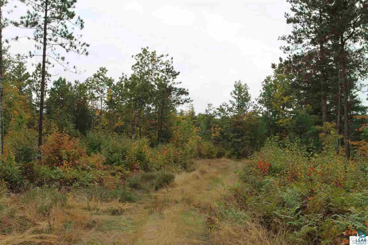 000 Friendly Valley Rd Lot 5