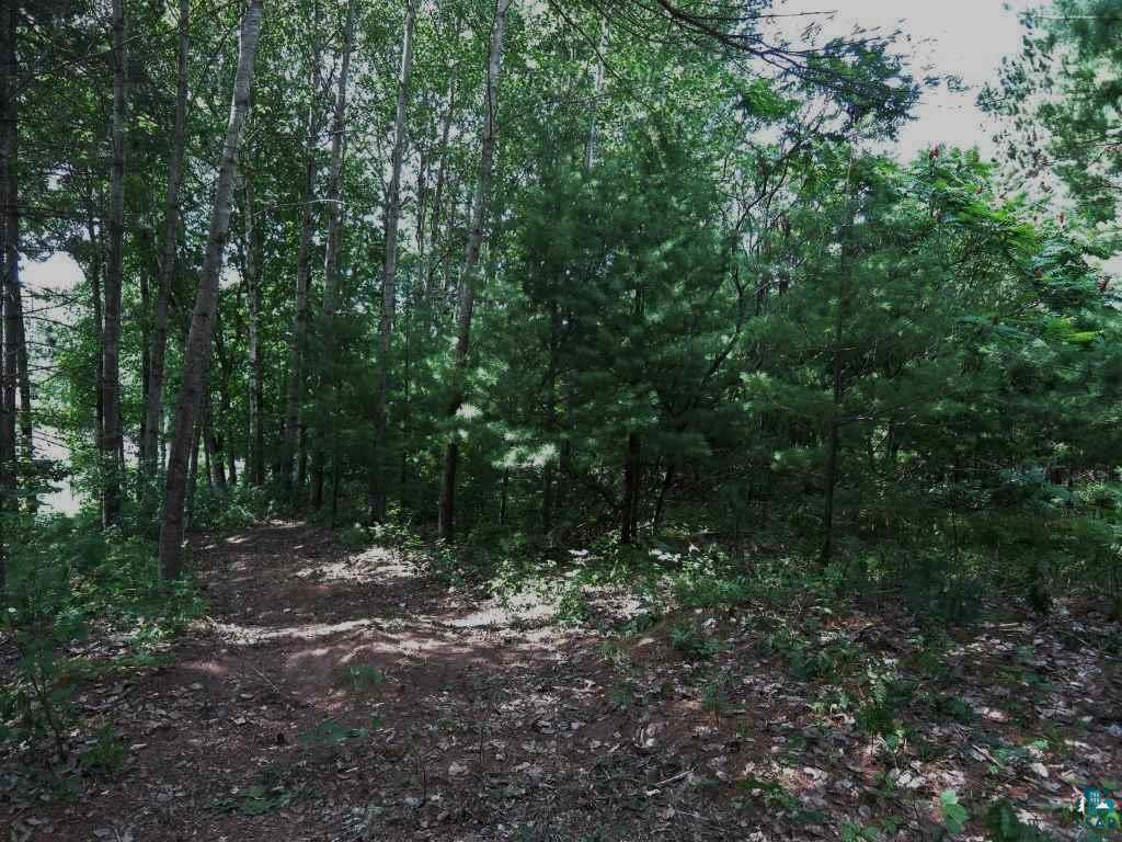 XXX Evergreen Ln Approx. 3 Acres