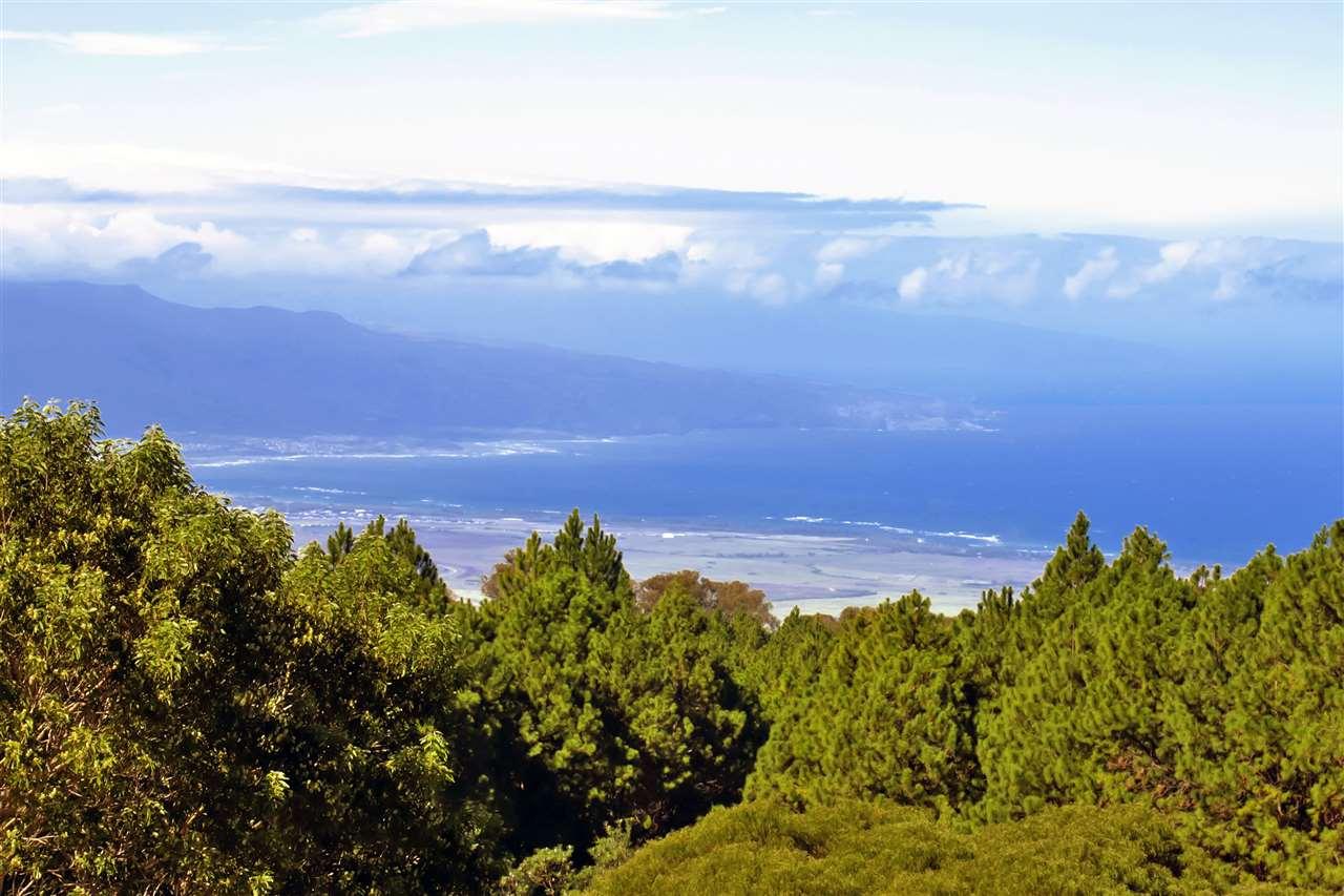 2625 Olinda, Makawao, HI 96768