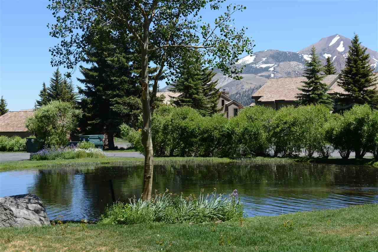 314 Fascination, Mammoth Lakes, CA 93546