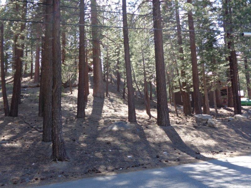 123 Alpine Circle, Mammoth Lakes, CA 93546