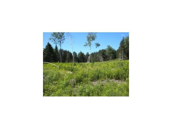 View Vacant Land For Sale at HAPPYNESS CIRCLE, Townsend, WI