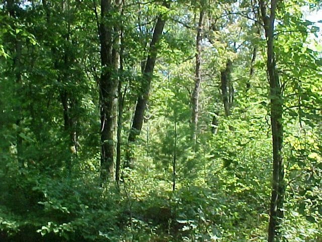 17.75 Ac County Road G, New Chester, WI 53936