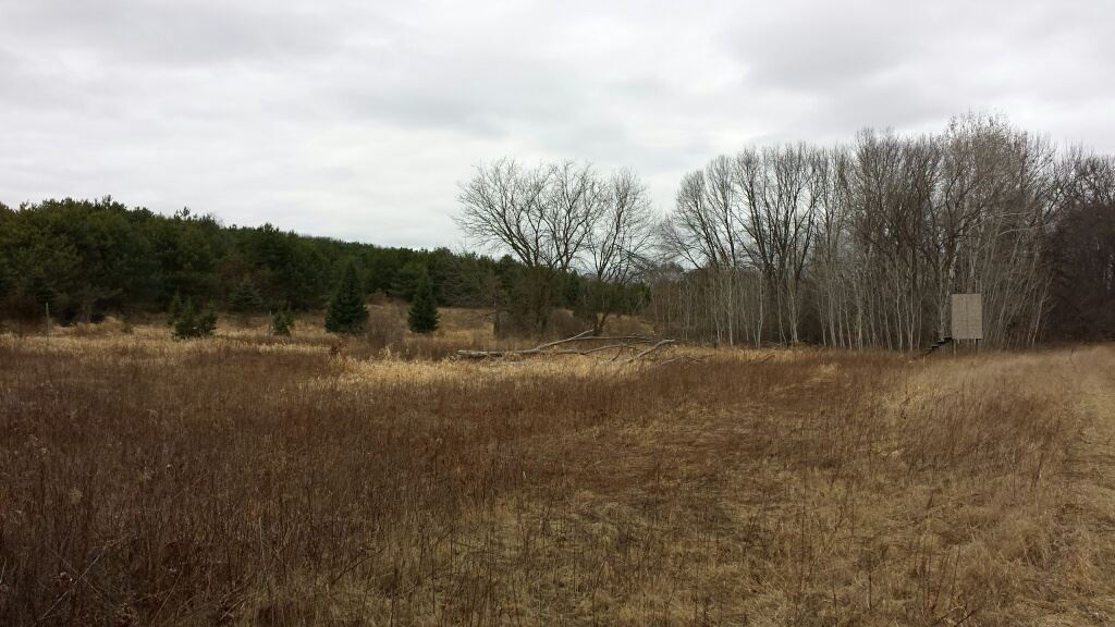 56.92 Ac County Road CX, Moundville, WI 53930