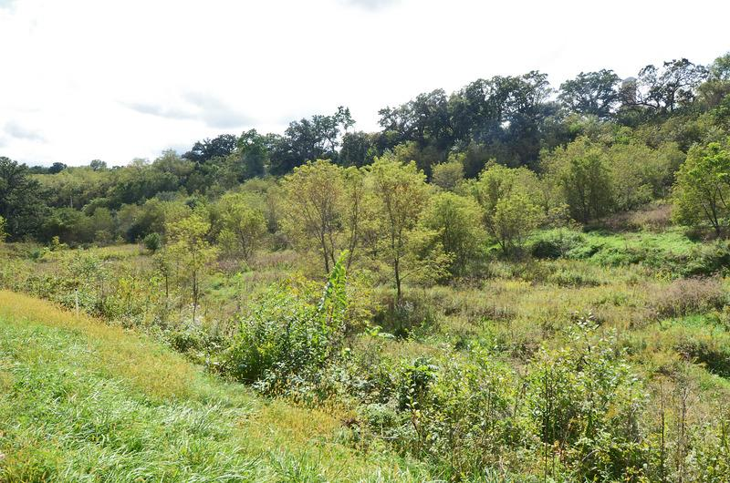 11.69 Ac County Road Z, Blue Mounds, WI 53517
