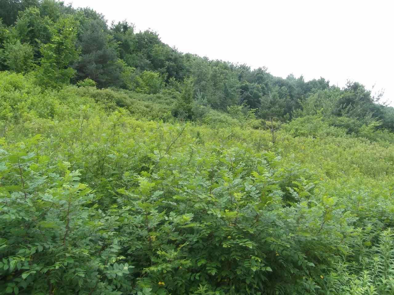 L20 Bluebird Dr, Bear Creek, WI 53556