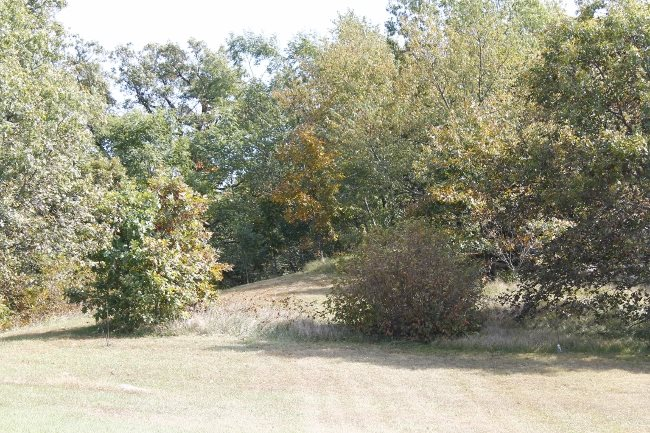 L6 Hammer Rd, Albany, WI 53505