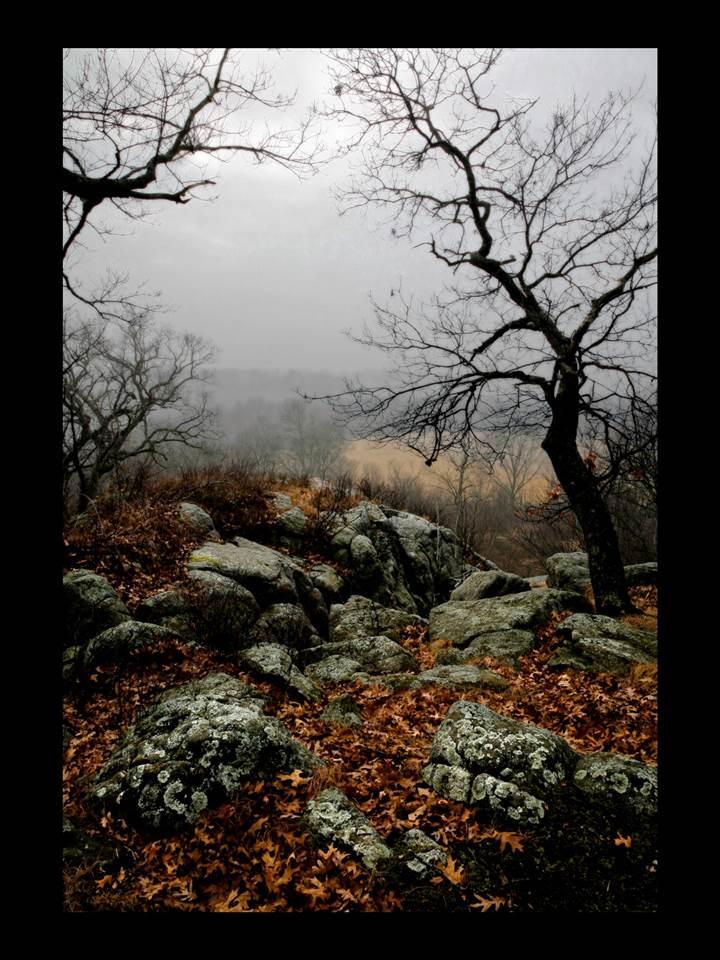 17.5 Ac Smokey Hollow Rd, Highland, WI 53543