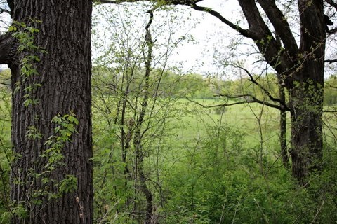 26 AC Hubred Ln, Cottage Grove, WI 53521