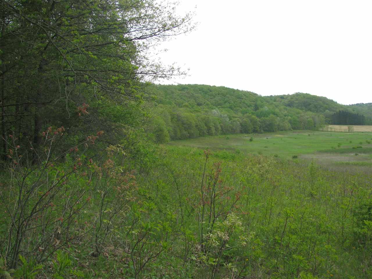 47 Ac County Road H, Arena, WI 53507