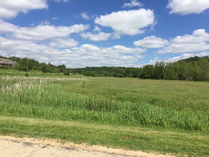 1814 County Road E, Blue Mounds, WI 53517