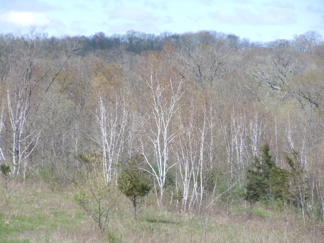 70 Ac Blue Mounds Tr, Vermont, WI 53515