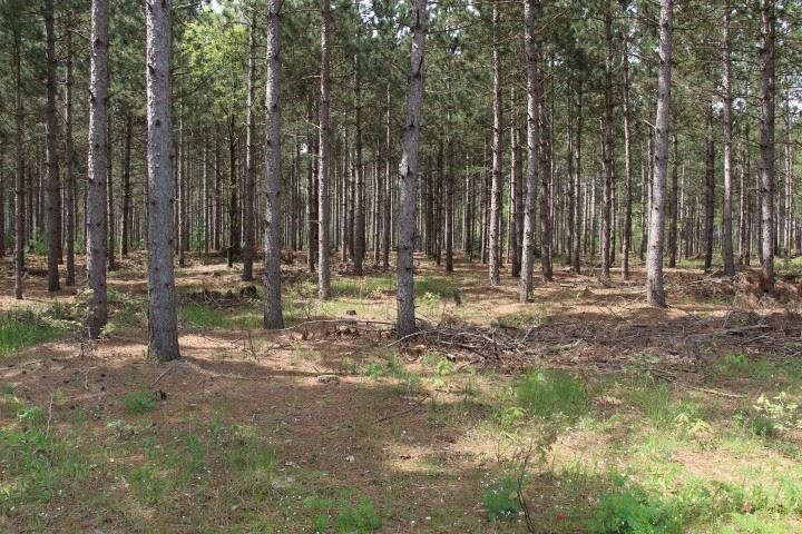 40 Ac 9th Dr, Easton, WI 53910