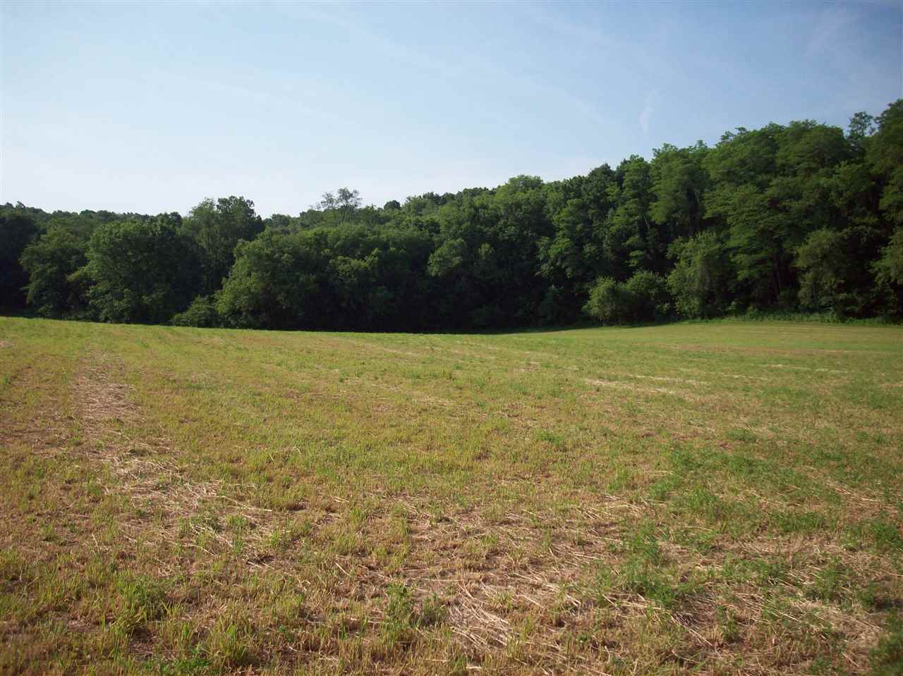 31.33 Ac Reeve Rd, Black Earth, WI 53560