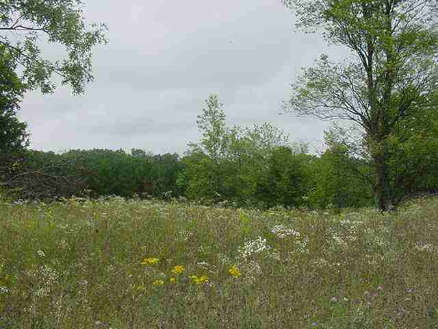 3.8 Ac W 4th Dr, New Chester, WI 53936