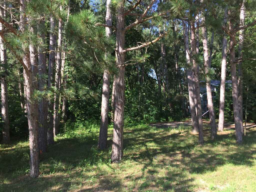 0.28 Ac W Lakeshore Dr, Avoca, WI 53506