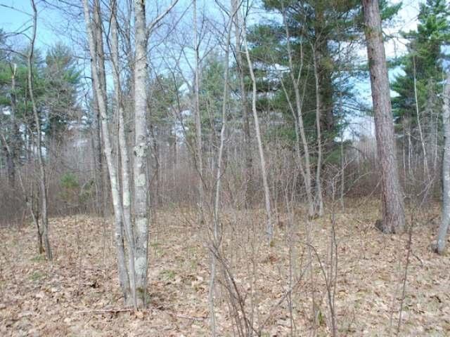 2 Ac Bluebird Ln, Arbor Vitae, WI 54568