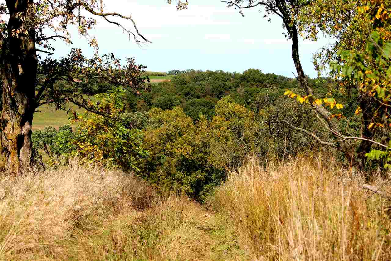 5324 Sunny Ridge Rd, Mineral Point, WI 53565