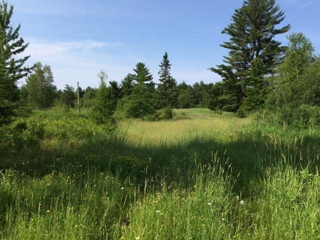 25 Acres County Road A, Tomahawk, WI 54487