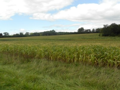 64.82 Ac County Road PP, Brooklyn, WI 54971