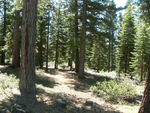 Additional photo for property listing at 11115 Comstock Place 11115 Comstock Place Truckee, California 96161 Estados Unidos