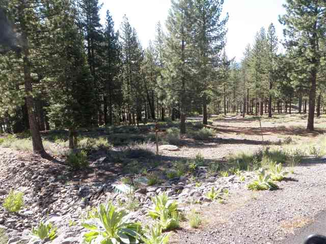 Lote residencial por un Venta en 11523 China Camp Road 11523 China Camp Road Truckee, California 96161 Estados Unidos