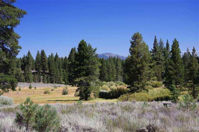 Residential Lot for Active at 13185 Snowshoe Thompson Truckee, California 96161 United States