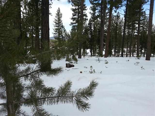 Residential Lot for Active at 11311 Elle Ellen Truckee, California 96161 United States