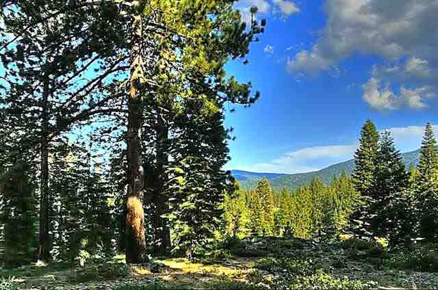 Superficie en Acres por un Venta en 11165 Rancho View Court 11165 Rancho View Court Truckee, California 96161 Estados Unidos