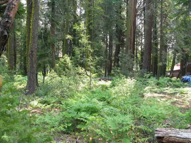 Residential Lot for Active at 2685 Rustic Lane 2685 Rustic Lane Tahoe City, California 96145 United States