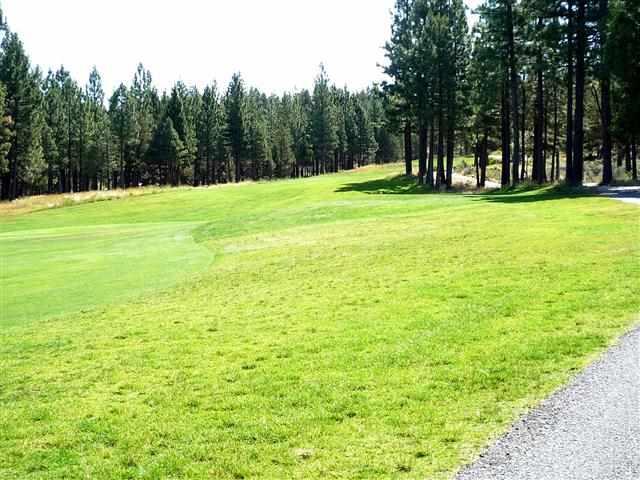 Additional photo for property listing at 466 Great Spirit 466 Great Spirit Portola, California 96122 Estados Unidos