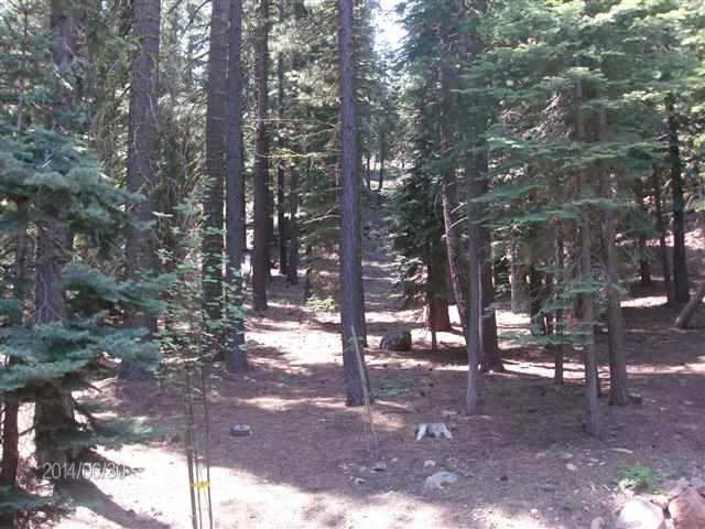 Additional photo for property listing at 16227 Northwoods Boulevard 16227 Northwoods Boulevard Truckee, California 96161 United States