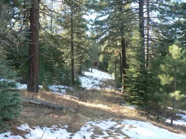 Additional photo for property listing at 10336 Palisades Drive 10336 Palisades Drive Truckee, California 96161 United States