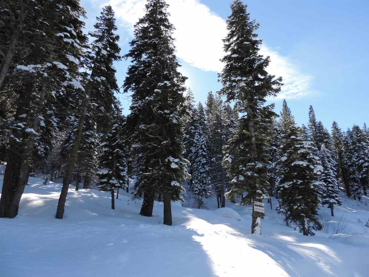 Land for Active at 3101 Mt Links Road 3101 Mt Links Road Olympic Valley, California 96146 United States
