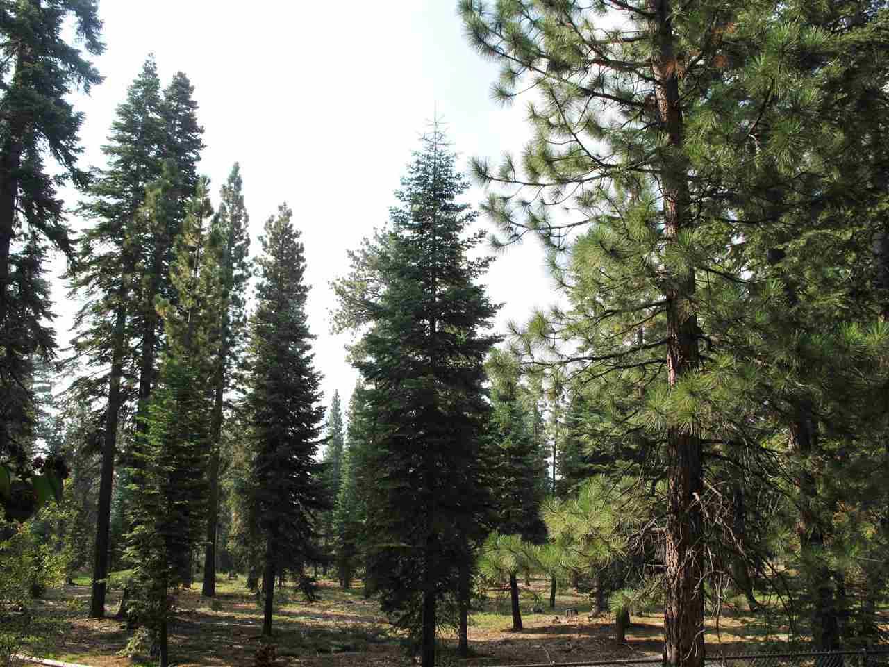 Additional photo for property listing at 3000 Polaris Road 3000 Polaris Road Tahoe City, California 96145 Estados Unidos