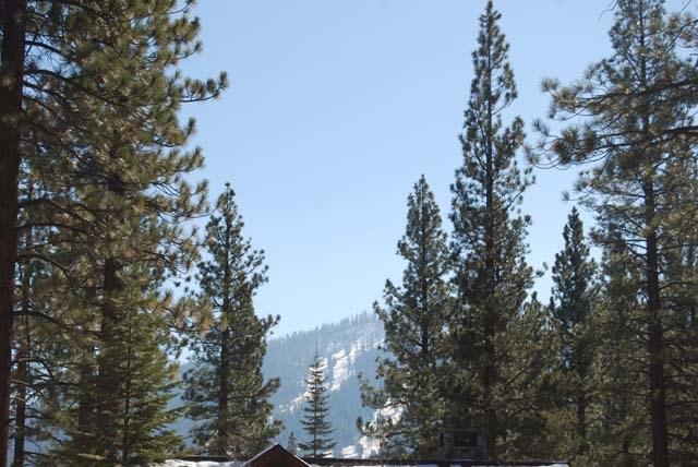 住宅地段 为 销售 在 12212 Pete Alvertson 12212 Pete Alvertson 特拉基, 加利福尼亚州 96161 美国