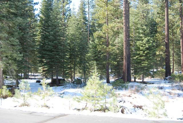 Additional photo for property listing at 12212 Pete Alvertson 12212 Pete Alvertson Truckee, California 96161 United States