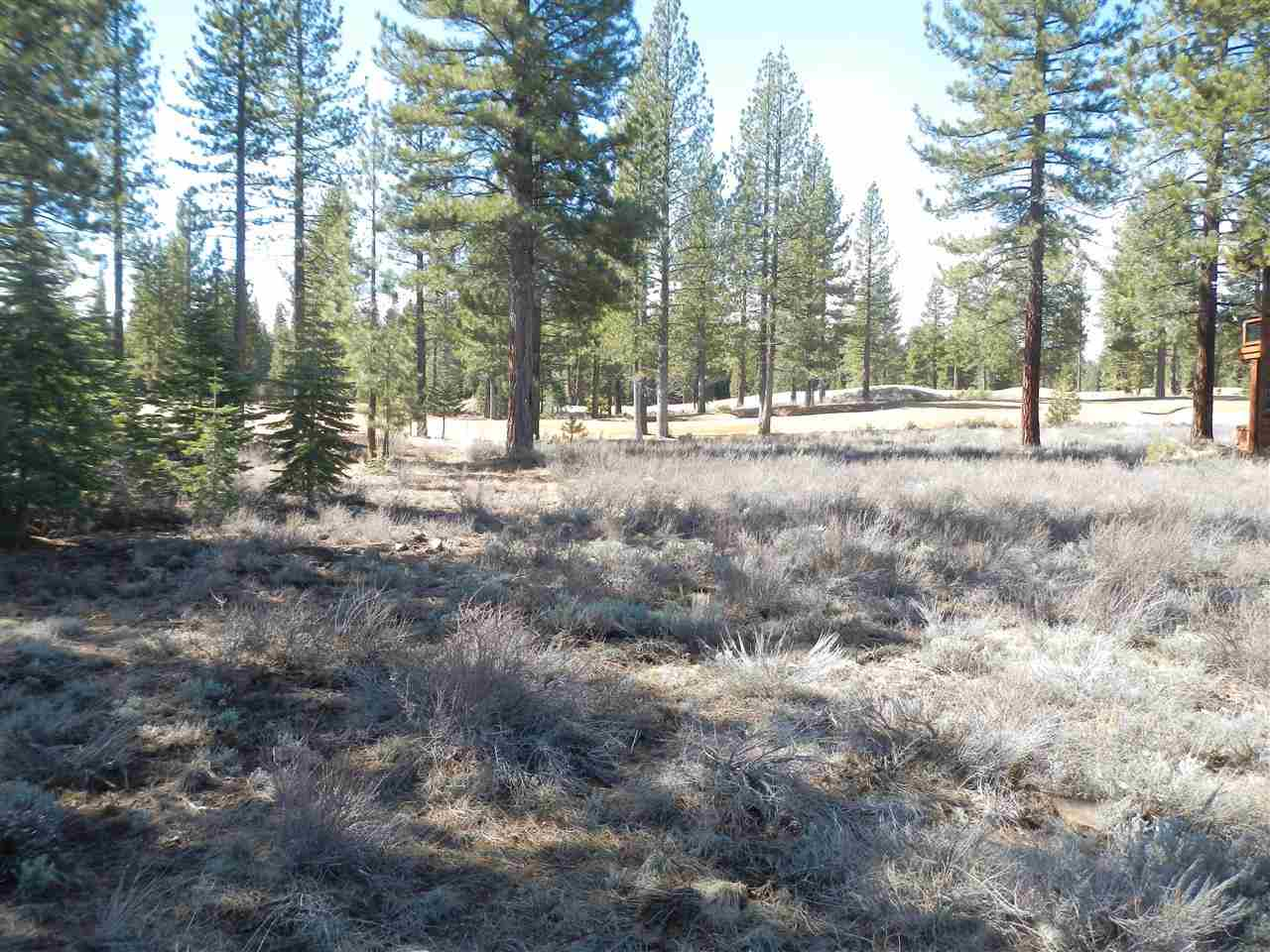 Additional photo for property listing at 9372 Heartwood Drive  Truckee, California 96161 United States