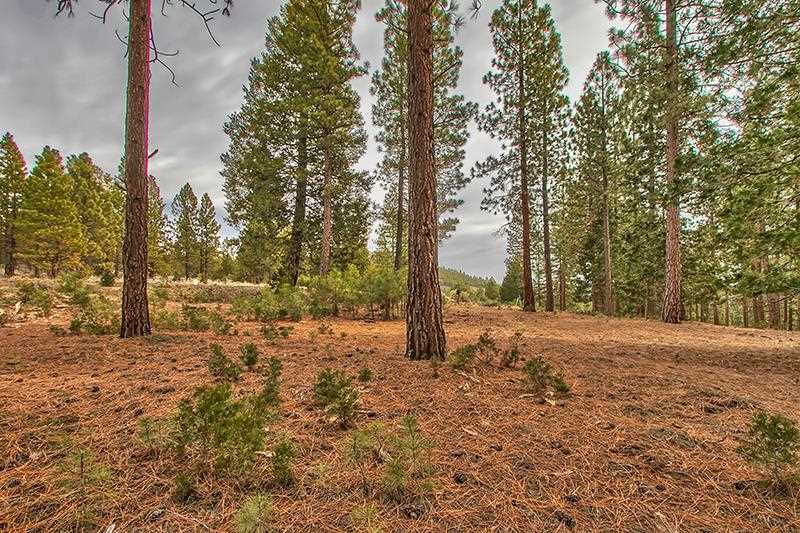 Residential Lot for Active at 299 Arrowleaf Road Portola, California 96122 United States