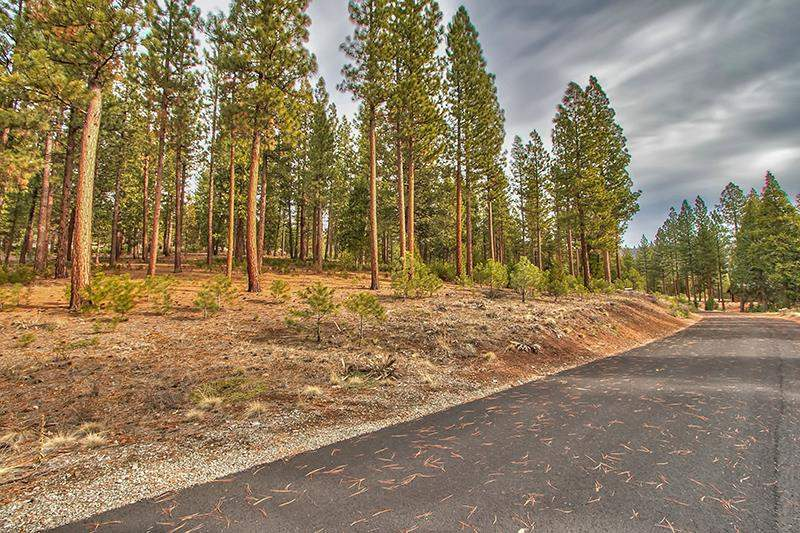 Additional photo for property listing at 299 Arrowleaf Road  Portola, California 96122 United States