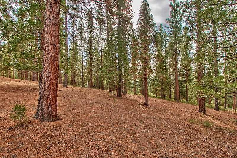 Additional photo for property listing at 299 Arrowleaf Road  Portola, California 96122 Estados Unidos