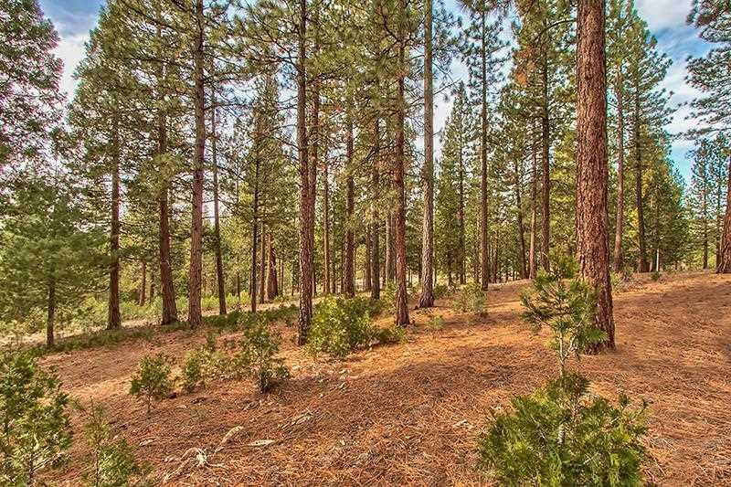Additional photo for property listing at 299 Arrowleaf Road 299 Arrowleaf Road Portola, California 96122 United States