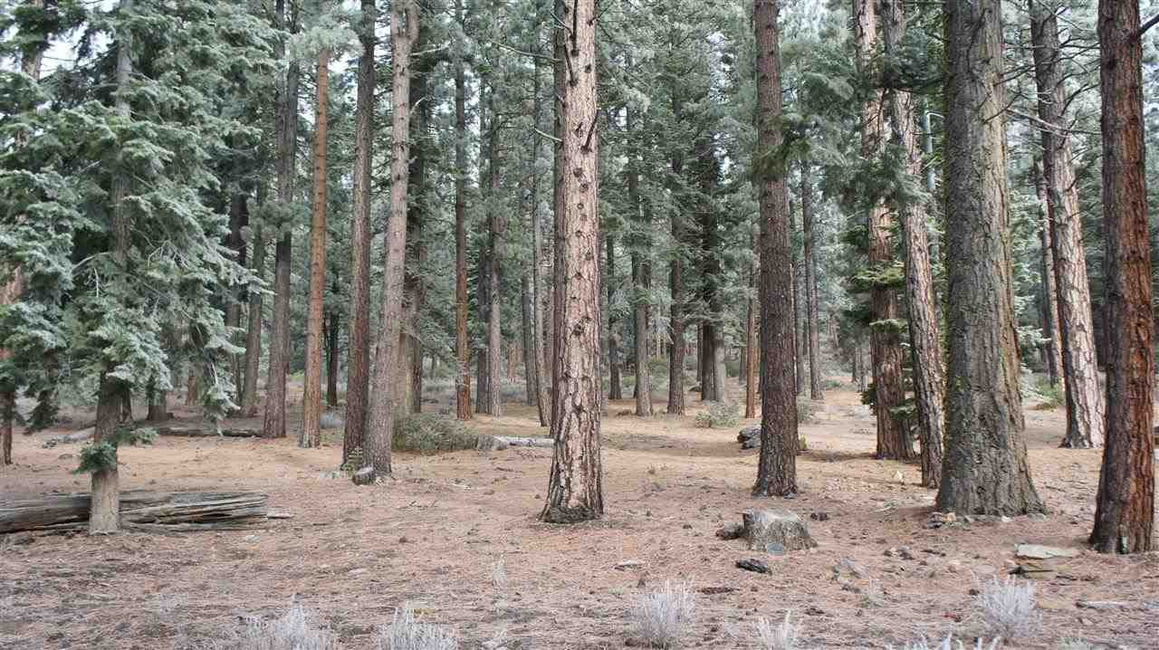 Additional photo for property listing at 11570 Bottcher Loop  Truckee, California 96161 Estados Unidos