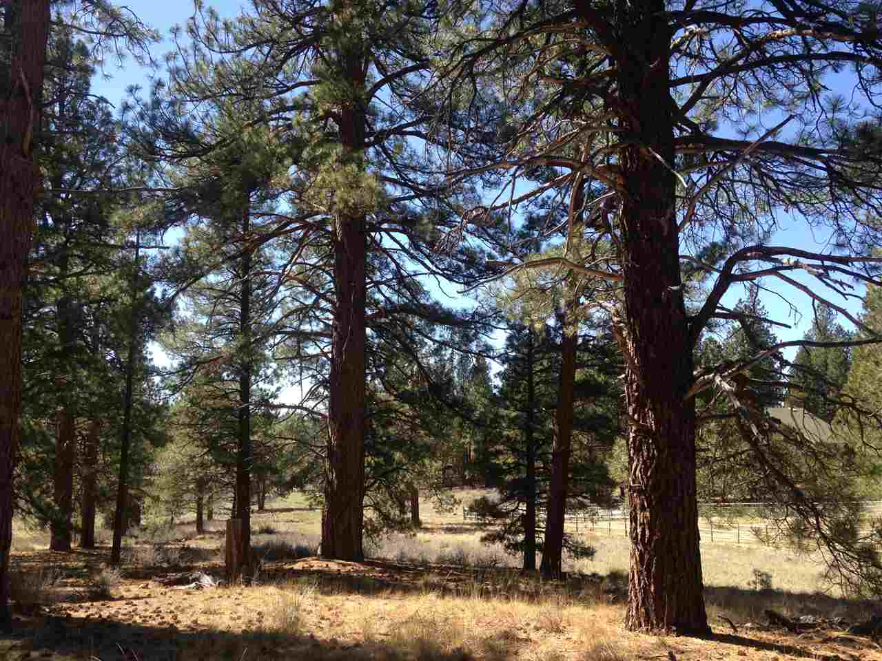 Additional photo for property listing at 15865 Saint Albans Place 15865 Saint Albans Place Truckee, California 96161 Estados Unidos