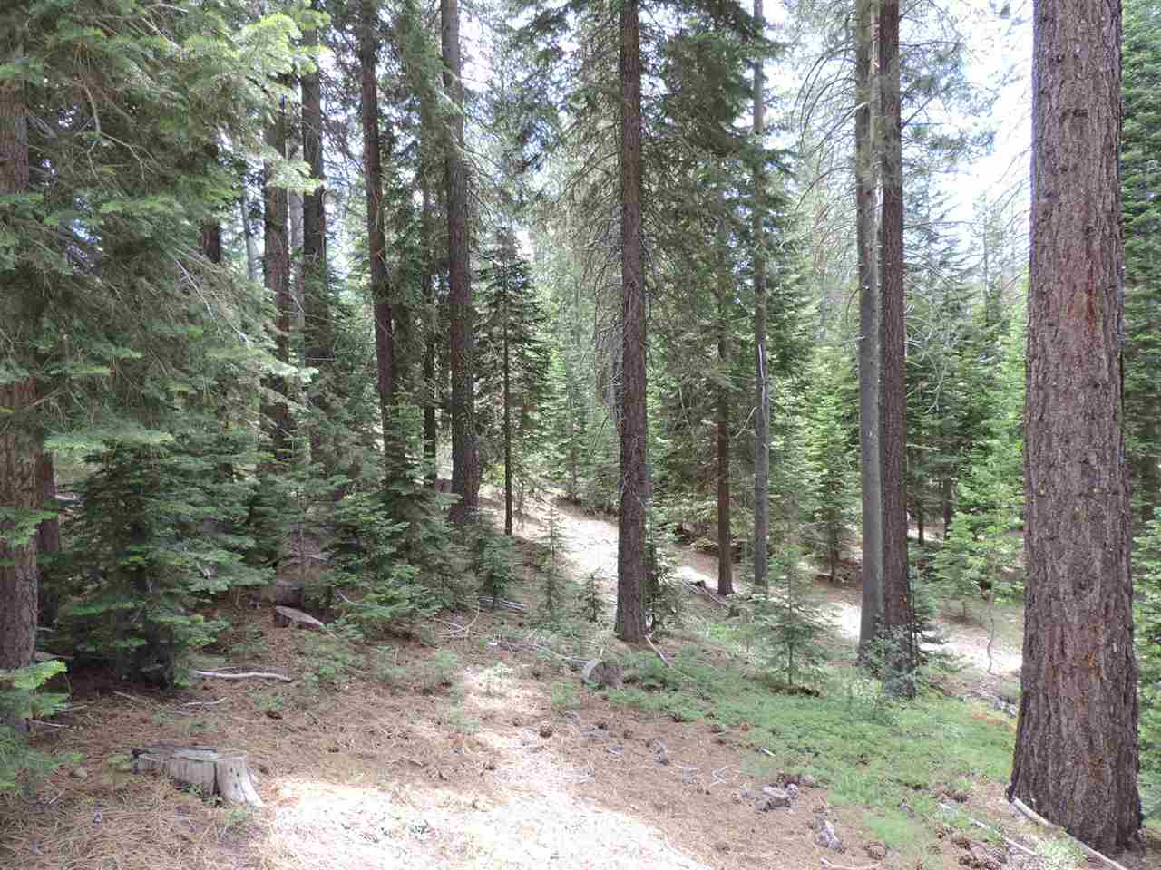 Additional photo for property listing at 120 Creekview Court 120 Creekview Court Olympic Valley, California 96146 Estados Unidos