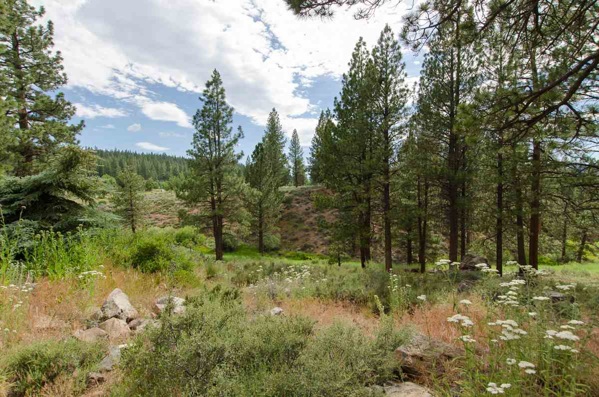 Additional photo for property listing at 10326 Manchester Drive  Truckee, California 96161 United States