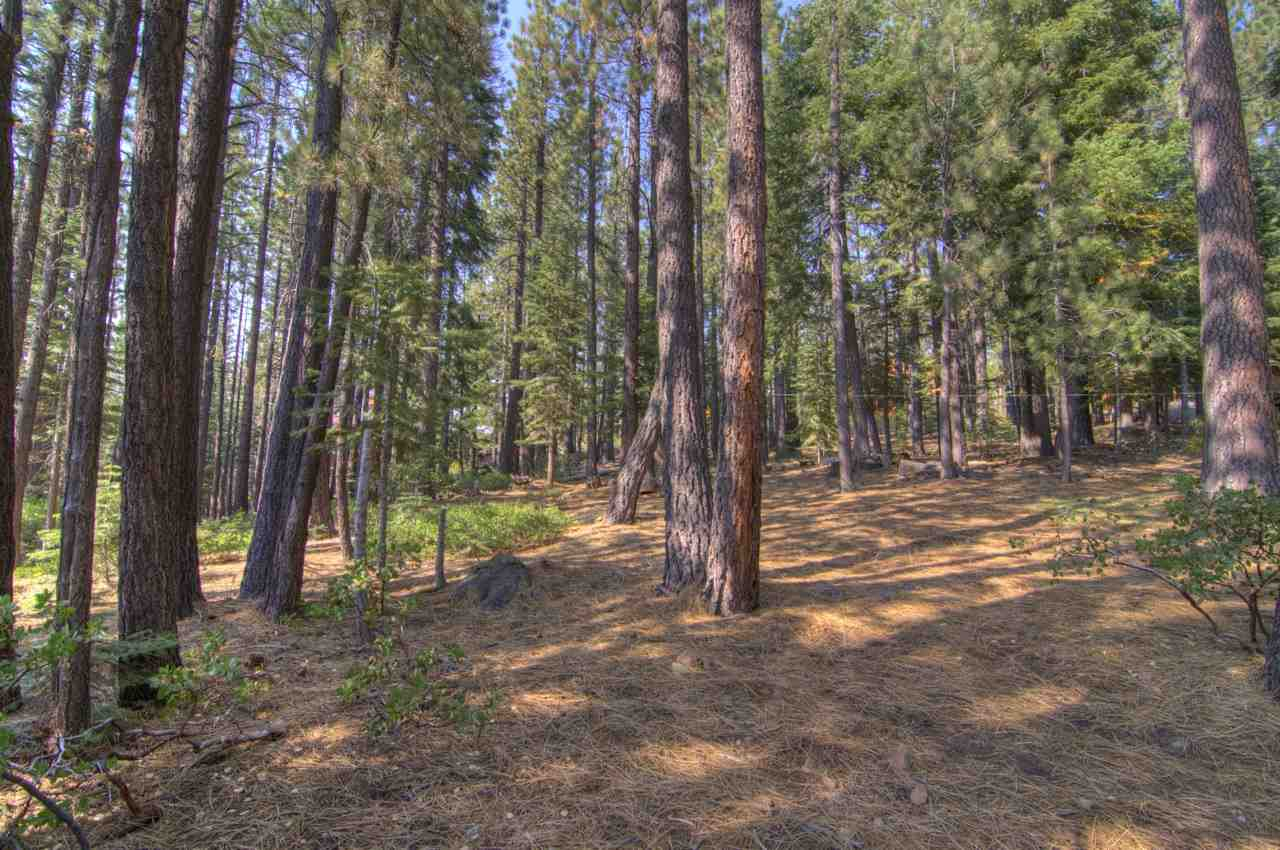 Additional photo for property listing at 13090 Falcon Point Place  Truckee, California 96161 United States