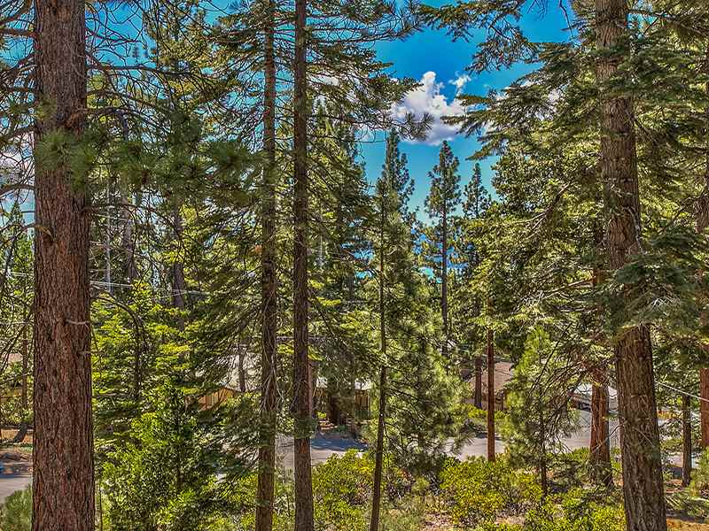 Additional photo for property listing at 3165 Panorama Drive 3165 Panorama Drive Tahoe City, California 96145 Estados Unidos