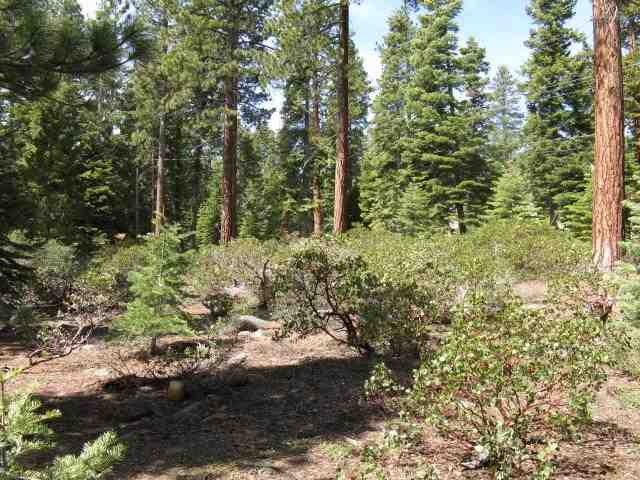 Additional photo for property listing at 6691 Idlewood Road  Tahoe Vista, California 96148 United States