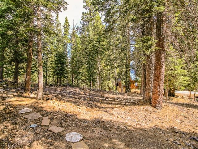 Additional photo for property listing at 14104 Pathway Avenue  Truckee, California 96161 Estados Unidos
